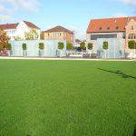 Rasen mit Häuserreihe